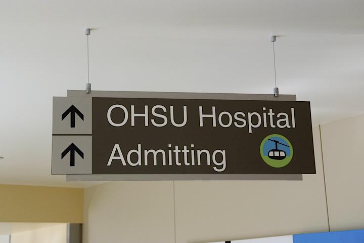 Hospital (69)
